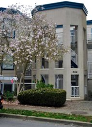 Parkview Terrace 2 Bedroom Apartment For Rent on Vancouver's Westside. 309 - 889 West 7th Avenue, Vancouver, BC, Canada.