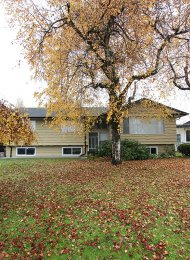Unfurnished 3 Bedroom Upper Level of House For Rent in West Central Maple Ridge. 11686 Holly Street, Maple Ridge, BC, Canada.