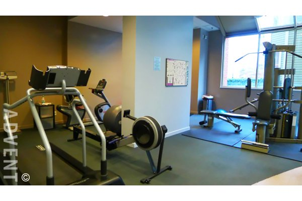 Eight one nine 1 bedroom apartment rental downtown - One bedroom apartments vancouver ...