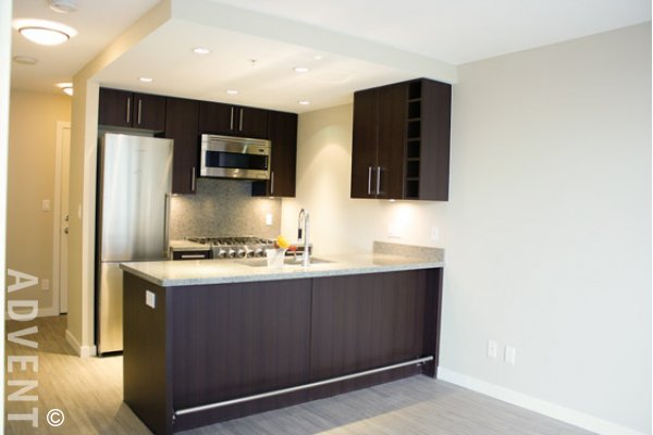 1 Bedroom Apartment Rental at Wall Centre False Creek in Westside Vancouver. 556 - 168 West 1st Avenue, Vancouver, BC, Canada.