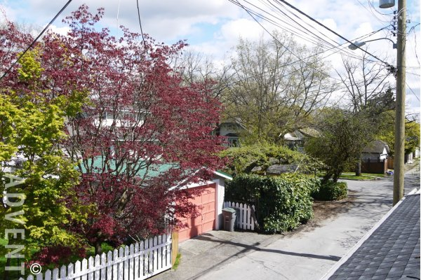 Modern Unfurnished Laneway House For Rent in Kitsilano, Westside Vancouver. 3229 West 12th Avenue, Vancouver, BC, Canada.