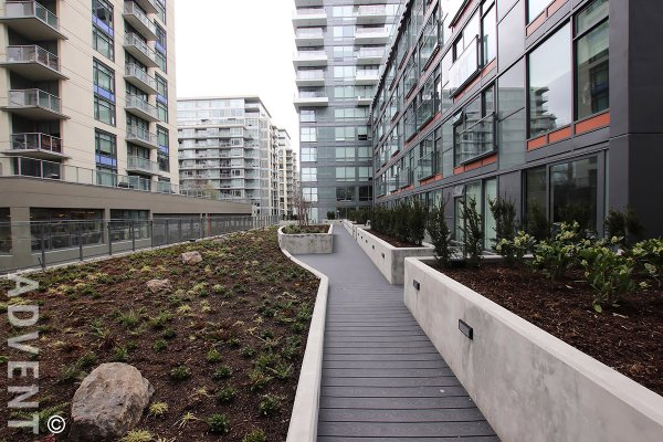 Brand New 1 Bed and Flex Apartment Rental at Epic at West at The Olympic Village. 1601 - 1788 Columbia Street, Vancouver, BC, Canada.